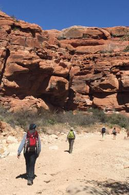 8 mile Hike in the Grand Canyons to the village of Supai
