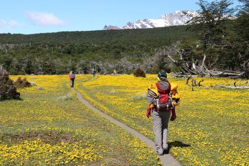 Trail to trek to Loma del Pliegue Tumbado