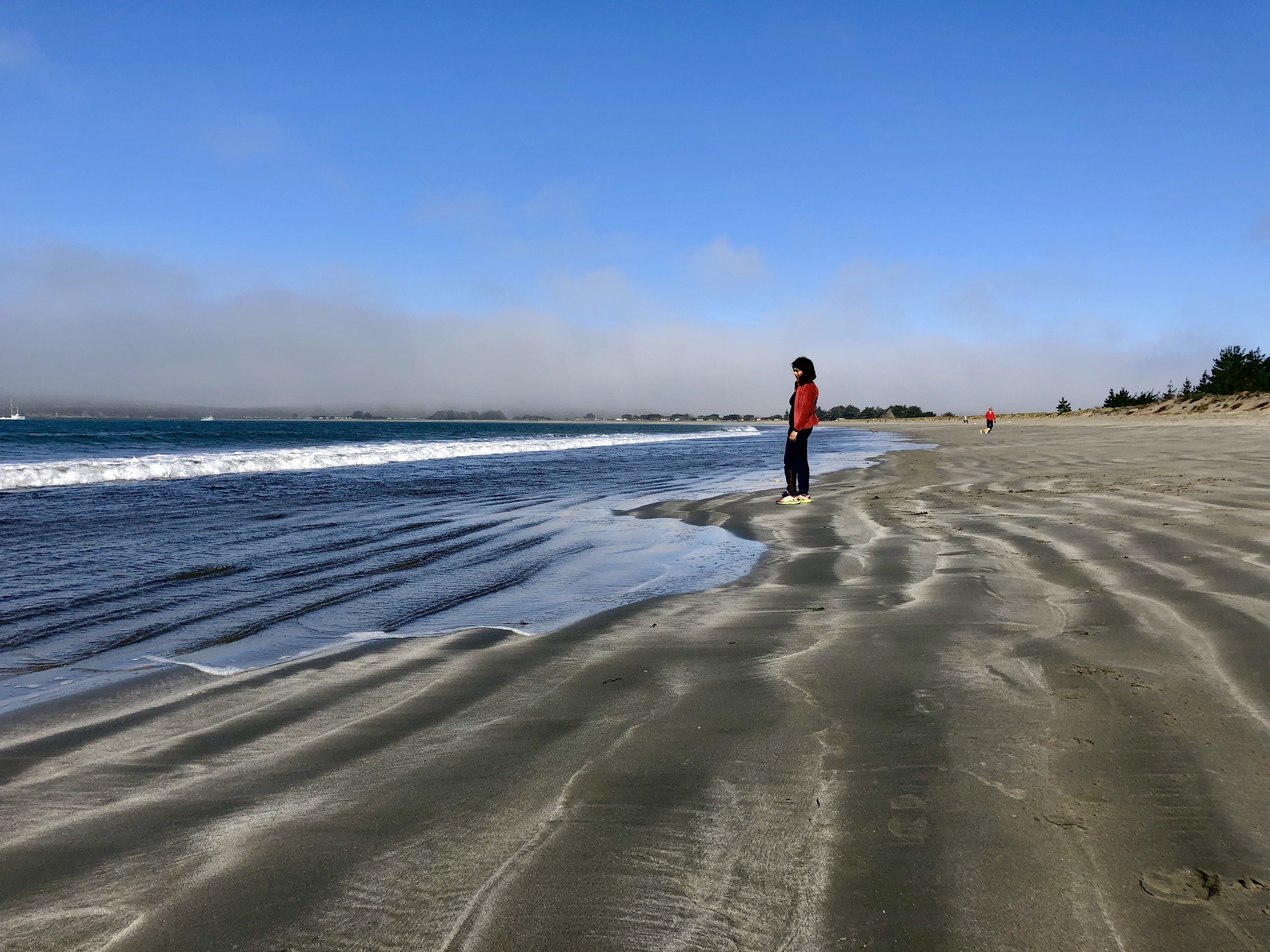Beach Camping – Bodega Bay